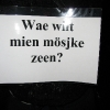auwt-wieverbal-platz-11-02-2010-037
