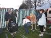 FEESTAVOND APL  12-04-2008 007